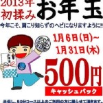2013年初モミお年玉